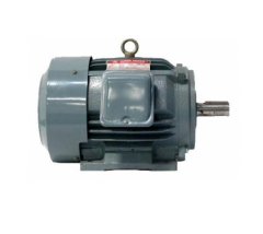 Induction Motors  Three Phase   1 HP, 2 HP
