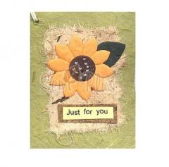 Card Toppers - Natural Earth Tone Sunflower on Light Green Card Topper