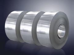 Stainless Steel (SUS301 SUS304)