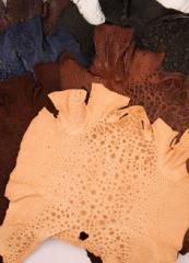 Bullfrog leather