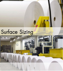 Paper  Surface Sizing