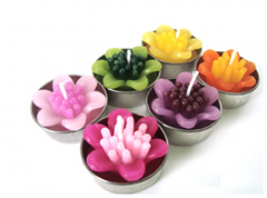 Zinnia flower in tea light