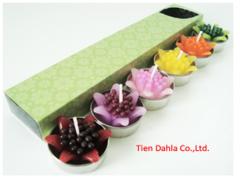 Gerbera flower in tea light
