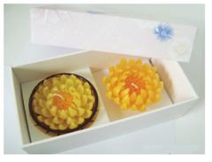 Chrysanthemum candle