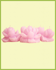 Candle OW100-084
