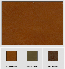 Leather Wyoming 011