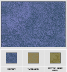 Leather Metallic zone