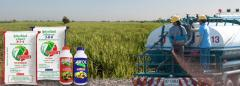 Organic Chemical Fertilizer