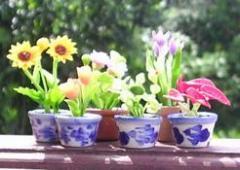 Miniature Flower clay pot
