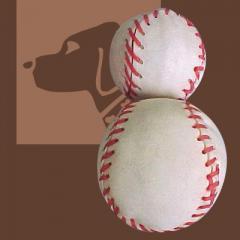 Bleached Baseball