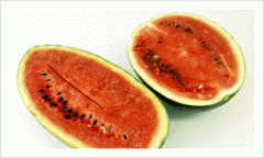 Red flesh Water Melon