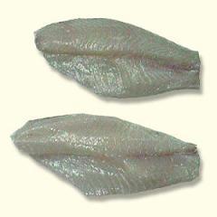 Tilapia (Nilotica)