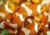 Percula marine fish