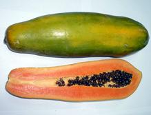 Papaya Yellow