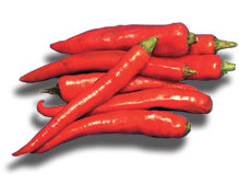Chilli Big Red