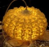 Petal lamps by wood