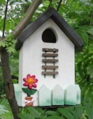Traditional Birddress box