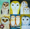 Postcard set barn owls set