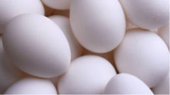 Chicken Eggs products
