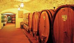 Red Wine Wines