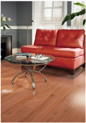 Formica® Laminate Flooring Modern Collection