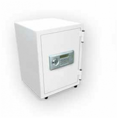 DV-50E Fire Safe Vertical Systems Digital
