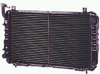 Radiator grille for a car