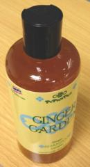 Shampoo (Ginger for Oily Hair)