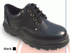 Shoe laces. Economics. (LOW CUT).