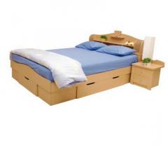BED : B.5018