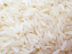 Rice (White rice and fragrance rice)