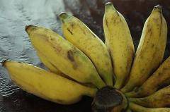 Bananas in Thailand