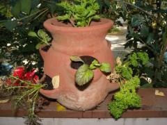 No. 1327 Strawberry pot (wood surface)