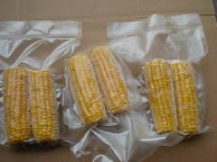 Frozen Sweet Corn (IQF)