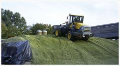 Paxtron corn silage