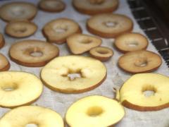 Air Dried Apple