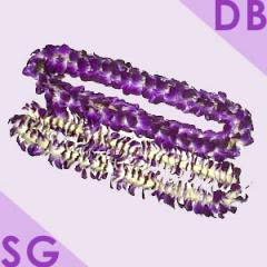 Lei Single (SG) and Double (DB)