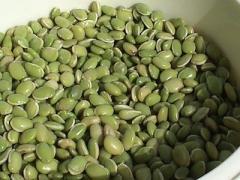 Boiled Bean Code: 508