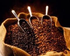 Organic Coffee IS