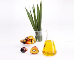 Crude Palm Kernel Oil