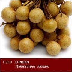 Fresh longan