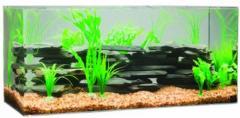 Standard Acrylic Aquariums