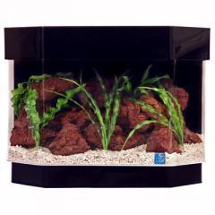 Deluxe Acrylic Aquariums