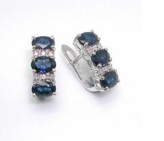 Earrings ESK02332