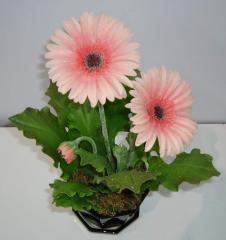 Yeabera Orod color set in ceramics pot
