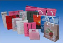 Fashion Shopping Bags