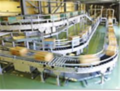 Conveyor & Vehicle Systems