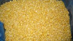 IQF Sweet Kermel cornfor