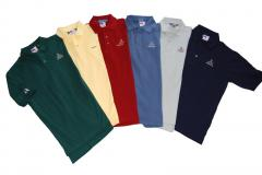 Shirts with neat job Polo