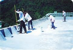 Waterproofing of the roof